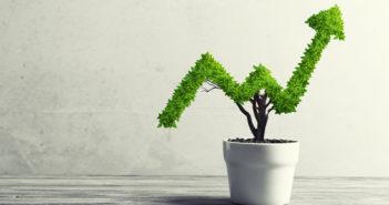 MallGuide_Investing_for_beginners